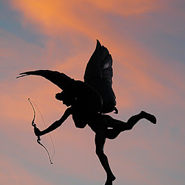 Cupido I by Joatan Berbel - Artistic Objects Other Objects ( artistic objects, street scene, culture, sculpture, street photography, architecture )