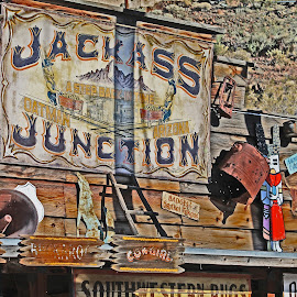 Jackass Junction by Annette Lagunas - Artistic Objects Signs ( love that, cool signs, how much is the sign, jackass, oatman )