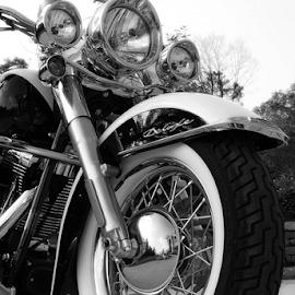 Deluxe Daze by Dave Feldkamp - Transportation Motorcycles ( harley, bike, deluxe, motorcycle, harley-davidson, softail, h-d, harley's )
