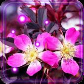 Free Springs Flowers LWP APK for Windows 8