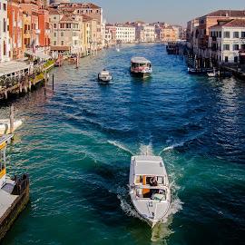 Venice  by Estislav Ploshtakov - City,  Street & Park  Historic Districts