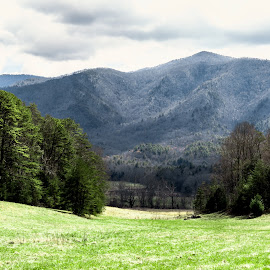 by Bernie Hunt - Landscapes Mountains & Hills ( smokey mountains )