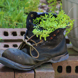 Eric's Boot with Vine by Terry Linton - Artistic Objects Clothing & Accessories