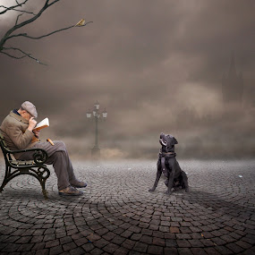 Distracted by Frank Quax - Digital Art People ( challenge, edit, manipulation, photoshop )
