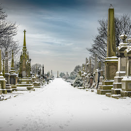 Long Walk by Darrell Evans - City,  Street & Park  Cemeteries ( plant, clouds, tomb, undercliffe cemetery, flora, white, stone, d600, grave, grave yard, winter, sky, bradford, snow, path, trees, monument, walkway, nikon )