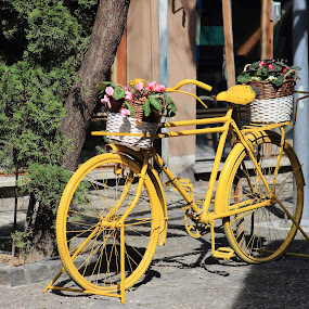 Street views from Greece by Sergey Sokolov - Artistic Objects Still Life ( urban, greece, street, view, yellow, street photography, bicycle )