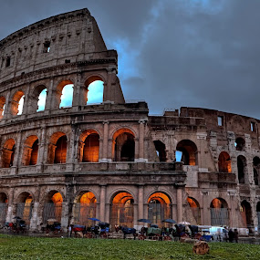 Colosseum, Rome by Joana Kruse - Buildings & Architecture Public & Historical