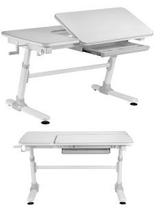 Парта-стол регулирующийся по высоте, E502