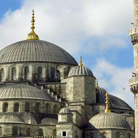 Domes by Randi Hodson - Buildings & Architecture Places of Worship ( mosque, istanbul,  )