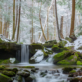 by Clare Kaczmarek - Landscapes Waterscapes ( winter, state game lands # 42, waterfalls, moss, laurel highlands, mountain streams )