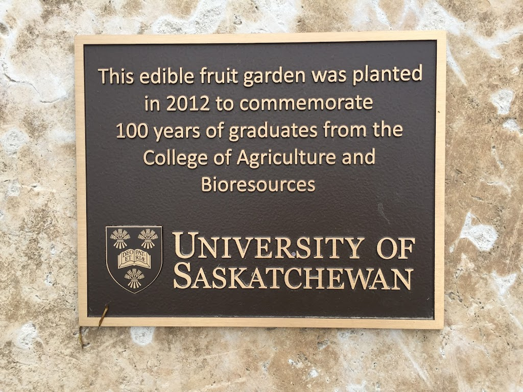 This edible fruit garden was planted in 2012 to commemorate 100 years of graduates from the College of Agriculture and Bioresources. University of Saskatchewan   Submitted by: @Saskajanet