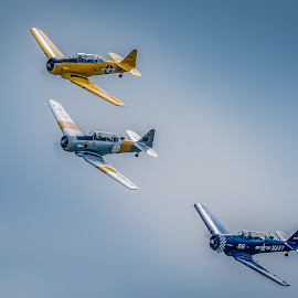 Three Zippy Planes by Anthony P Morris - Transportation Airplanes ( anthony morris, duxford, anthonypmorris, oxford, farmoor, airshow )