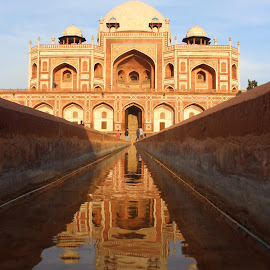 Humayun's Tomb, Delhi by Krishnamurthy Thakur - Buildings & Architecture Statues & Monuments ( architecture, humayun's tomb, delhi,  )