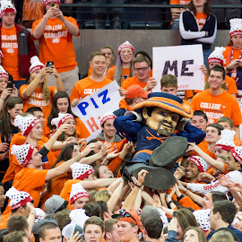 Crowd-Surfing Cav Man by Stacy Smith - Sports & Fitness Basketball ( cav man, charlottesville, mascot, orange, signs, espn, cheer, game day, fans, uva, john paul jones, university of virginia, arena, spirit, virginia, posters, crowd, gameday )