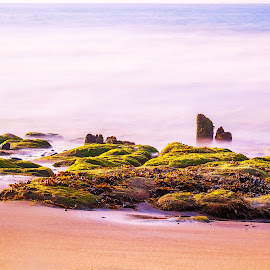 by Rob Willis - Landscapes Beaches