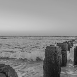Firmly footed by Laura Gardner - Novices Only Landscapes ( sand., waves, sea, ocean, atlantic, nj )