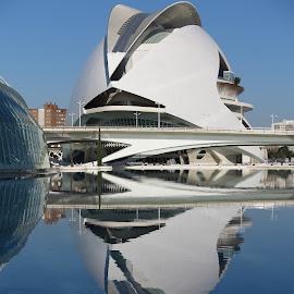 Opera House, Valencia by Luis Felipe Moreno Vázquez - City,  Street & Park  Street Scenes ( water, buildings, sain, reflections, architecture, valencia, opera house, calatrava )