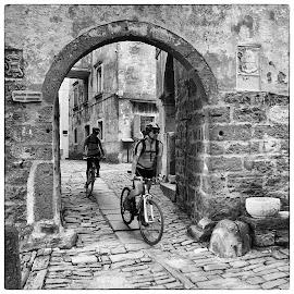 City of Groznjan by Tomislav Zebic - City,  Street & Park  Street Scenes