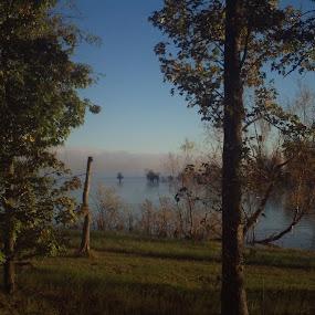 Morning Fog by Kirk Barnes - Landscapes Waterscapes ( fog,  )