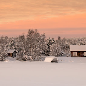 Sunset colors in Lapland by Natalia Photography - Landscapes Sunsets & Sunrises ( sky, discover, explore, lapland, nature, inari, winter, frozen, cabin, colors, canon, adventure, beautiful, white, golden hour, snow, sunset, golden, travel, landscape, finland )