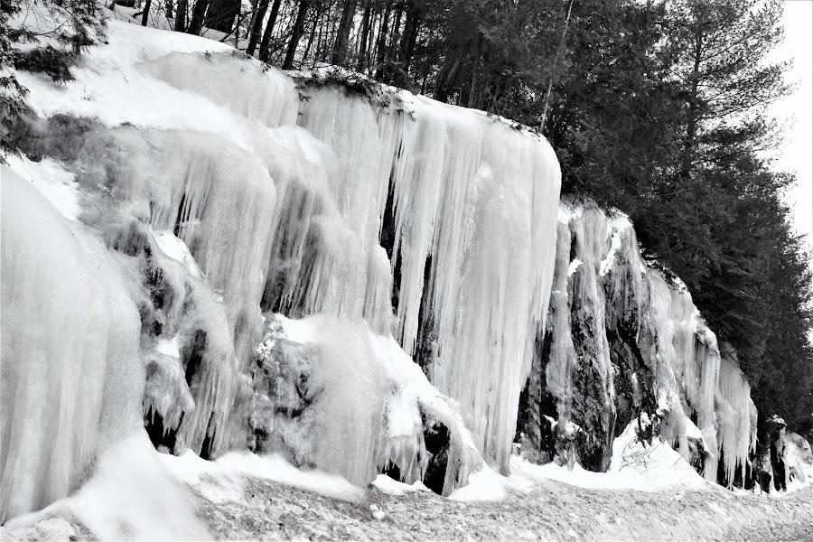 Icy Rocks by Linda    L Tatler - Black & White Landscapes (  )