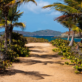 Road to Paradise by Brad Chapman - Landscapes Travel ( 2015, cruise, oasis, day 4, st. thomas )
