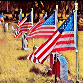 Honor by Alycia Marshall-Steen - Digital Art Places ( flags, honor, cemetary, grave, respect, military )