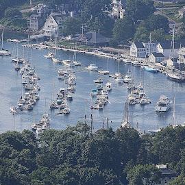 CAMDEN HARBOR by Gary Colwell - Transportation Boats ( hills, harbor, park, maine, boats, camden )