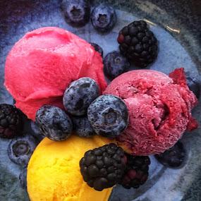 Rainbow Sorbet by Dan Herman - Food & Drink Candy & Dessert