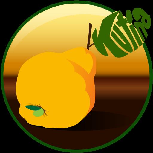 Android aplikacija Kutina - službeni vodič na Android Srbija