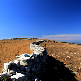 Walls by Gil Reis - Landscapes Prairies, Meadows & Fields ( places, walls, nature, stones, travel, life )