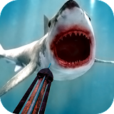 Download Fish Hunting Adventure - 3D free version