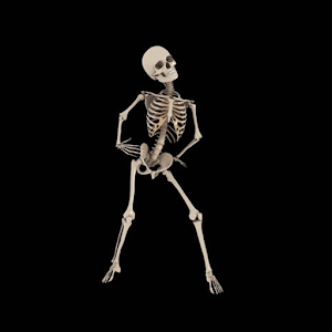 Download Skeleton live wallpaper APK to PC | Download ...