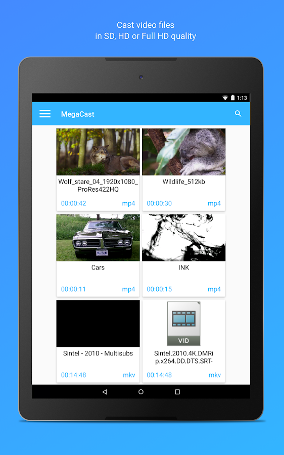 MegaCast - Chromecast player Screenshot 7