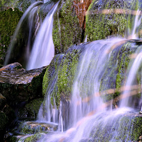 Waterfall by Gil Reis - Nature Up Close Water ( water, hills, macro, life, nature, places )
