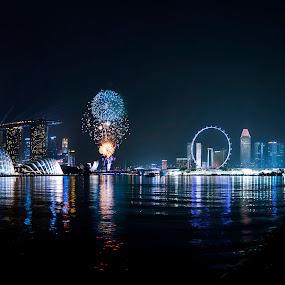 GBTBE 2XFireworks by Max Ooi - City,  Street & Park  City Parks