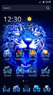 Theme for Cool Leopard - screenshot