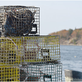 Lobster Pots  by Lorraine D.  Heaney - Artistic Objects Industrial Objects