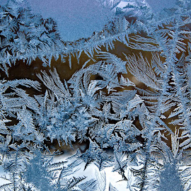 Состояние воды by Oleg M Kulishov - Nature Up Close Water ( вода, зима, мороз,  )