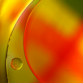 A narrow escape by Dipali S - Abstract Patterns ( abstract, surface, ellipse, blister, circle, yellow, oil, macro, liquid, fluid, droplet, background, drops, wet, small, closeup )