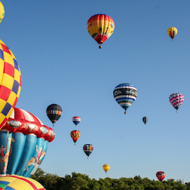 Howell Hot Air Balloon Festival Launch by Steve Wells - Transportation Other ( hot air balloon, michigan, arborwells photography, howell, launch, steve l wells, howell hot air balloon festival )