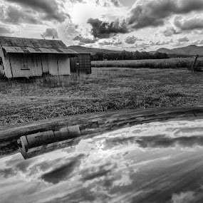 Sugar Cane Worker's Quarters by Laurie King - Landscapes Cloud Formations ( clouds, queensland, b&w clouds, sugar cane fields, australia, reflections, pwcbwlandscapes, worker's quarters, carmila, b&w landscape, rural )