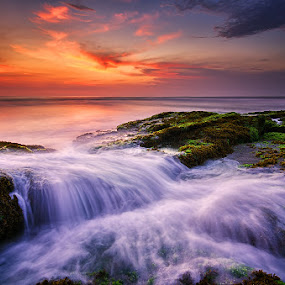 One Day in Paradise by Eggy Sayoga - Landscapes Waterscapes ( waterscape, indonesia, wave, canggu, beach, landscape, motion, lima )