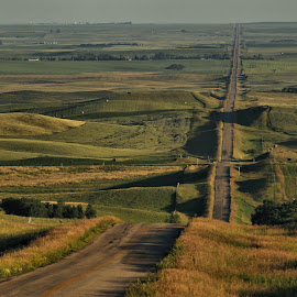 The Long and Not So Winding Road by Tim Day - Landscapes Prairies, Meadows & Fields ( field, saskatchewan, road, prairie, straight )