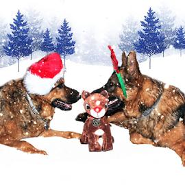 Maggie n Justice by Dawn Vance - Digital Art Animals ( reindeer, animals, dogs, digital art, christmas, german shepherd )