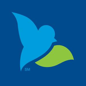Bluebird by American Express Online PC (Windows / MAC)
