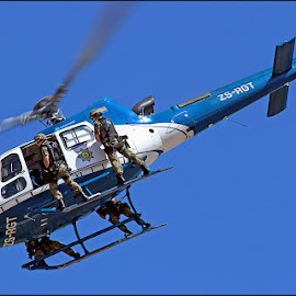 When Pigs Fly by Craig McNiven - Transportation Helicopters ( helicopter, police, south, africa,  )