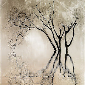 Looking at oneself  by Kate Anthony - Digital Art Abstract ( water, mirrored image, sepia, water reflection, reflection, instagram, texture, leafless, fine art, iphone, mirror, iphoneography, tree, ripples, mobile )