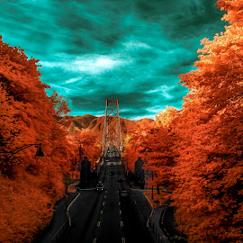 Gate 2 by Nigel Bullers - Abstract Light Painting ( ir, sky, trees, bridge, surreal )