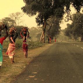 Tribal by Jhilam Deb - People Group/Corporate ( national park, jaldapara national park, women, people, tribal,  )